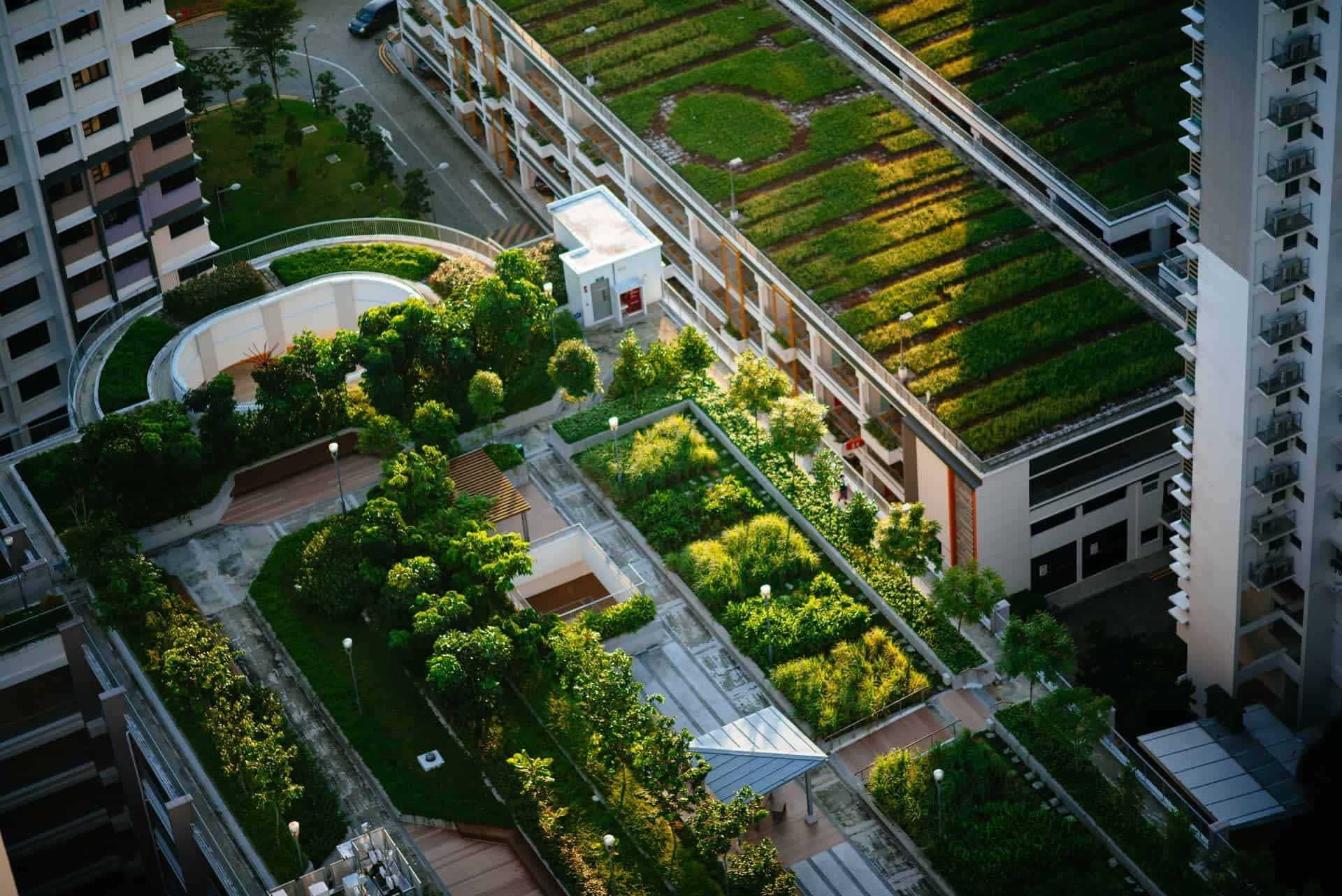 Green roof - Roof - Ag Pro Technologies, Agricultural Products for Landscapers, Homeowners, Lawn Care, Sod Farms, and Gardeners